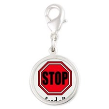 Food Allergies 1 Silver Round Charm