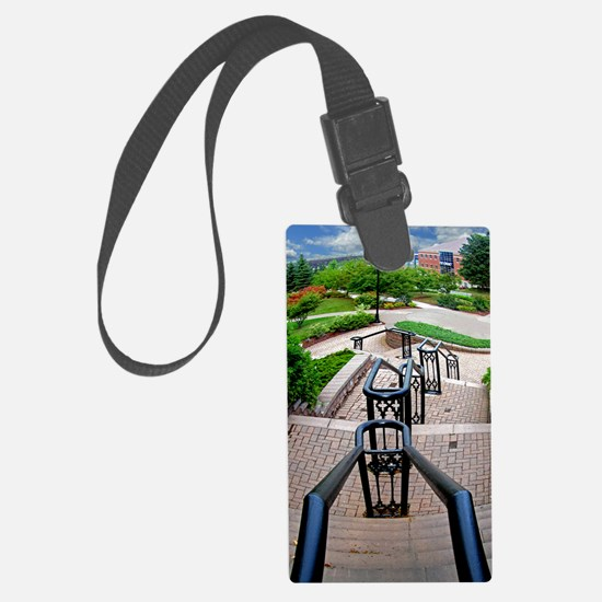 down and away1 Luggage Tag