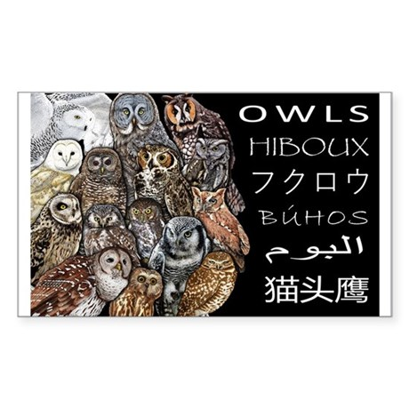 Owls Collage Sticker (Rectangle)