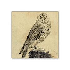 """Grey Owl Square Sticker 3"""" x 3"""""""