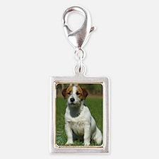 Jack Russell Terrier 9M097D- Silver Portrait Charm