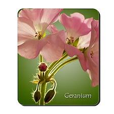 PinkGernaiums_5X7 Mousepad