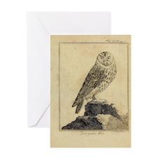 Die Grau Eule Greeting Card