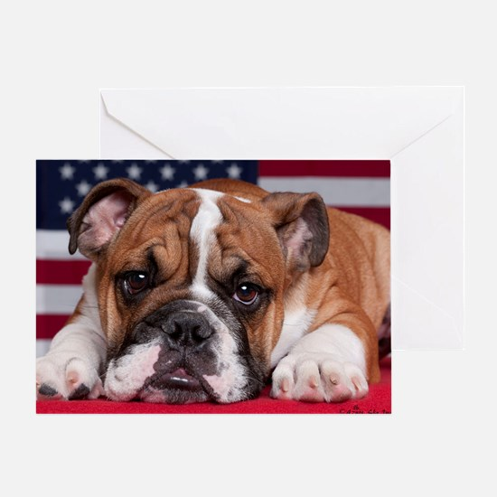 Patriot Bulldog Greeting Card