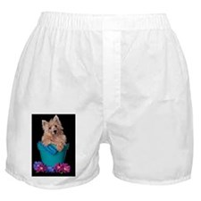 Cairn Terrier Bloom Boxer Shorts