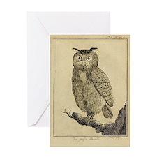 Big eared Owl Greeting Card