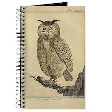 Big eared Owl Journal
