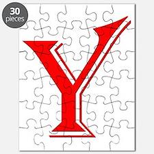 Y Puzzle