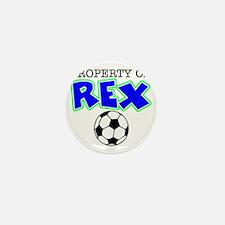 rex bottle Mini Button
