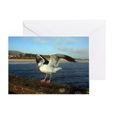 Sea Gull with its wings out Greeting Card
