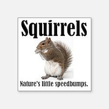 """Squirrel-Bumps Square Sticker 3"""" x 3"""""""
