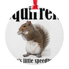 Squirrel-Bumps Ornament