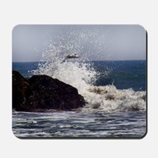 Sea Gull flying a mist crashing waves Mousepad