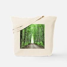 LigTun1010SF Tote Bag