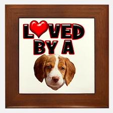 Loved by a Brittany Spaniel Framed Tile