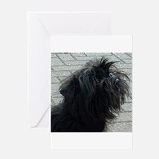affenpinscher Greeting Cards