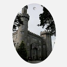 Ireland 10  text Oval Ornament