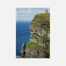 Ireland 01 no text Rectangle Magnet
