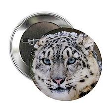 """Snow Leopard 2.25"""" Button"""