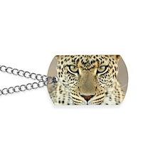 Leopard Dog Tags