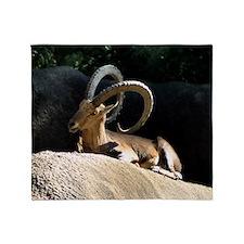 Nubian Ibex showing off his good sid Throw Blanket