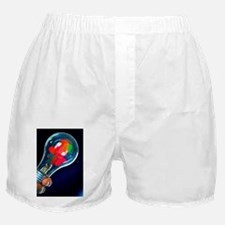 Creative Idea Boxer Shorts