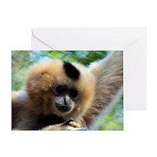 Golden-Cheeked Gibbon eatting 9 Greeting Card