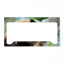 Golden-Cheeked Gibbon eatting License Plate Holder