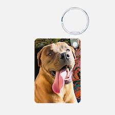 Card-Aiden Keychains