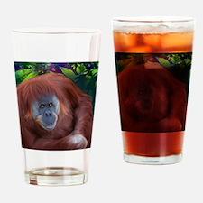 Orangutan-TriPodDogDesign Drinking Glass