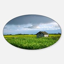 Wooden Shed in Canola Field Decal