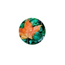Autumn Leaf Painting Mini Button