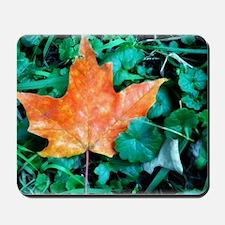 Autumn Leaf Painting Mousepad