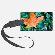 Autumn Leaf Painting Luggage Tag
