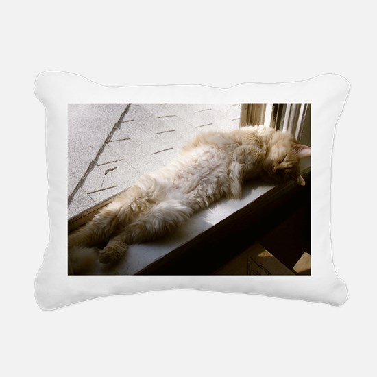 P1010044_029 Rectangular Canvas Pillow