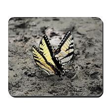 butterflyduo_10x10 Mousepad