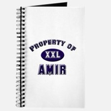 Property of amir Journal