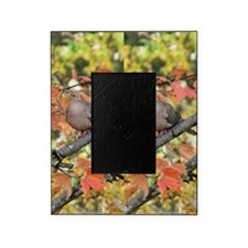 MD10.526x12.885(203) Picture Frame