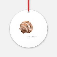 Shell Study 6 Round Ornament