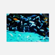 Fish Rectangle Magnet