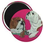 English Bulldog Pair Magnet