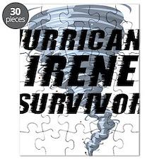 HurricanIreneEline1 Puzzle