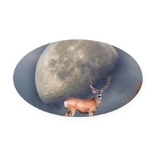 Dream buck 2 Oval Car Magnet