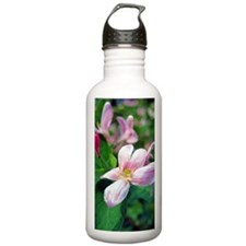 Floral Art Water Bottle