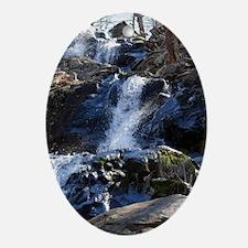 dark_hollow_closer Oval Ornament