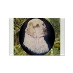 Clumber Spaniel Hunter Rectangle Magnet (100 pack)