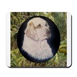 Clumber Spaniel Hunter Mousepad