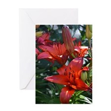 Blood Red Lilies Greeting Card