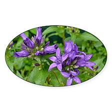 Bellflowers Decal