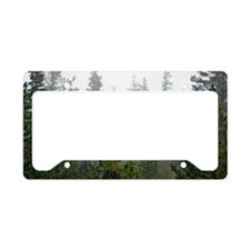 Pine tree forest License Plate Holder
